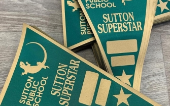 Single Colour Pennants - Sutton Public School
