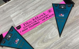 Full colour pennants (and show ribbon)