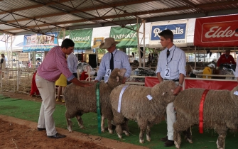 Qld Ag Show - Credit Richard Smith