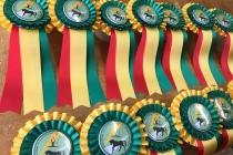 Rosettes - Australian Vaulting Championships