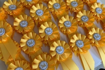 Yellow special order 5cm rosettes