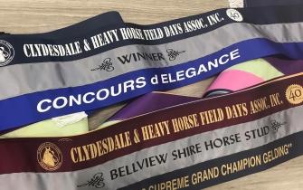 Tri colour show ribbons  - assortment