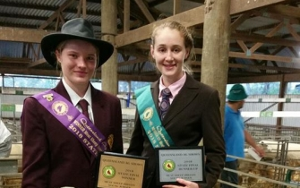 Award winning sheep